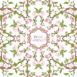 Mandala för körsbärsröda blomningar för vår Arkivbilder