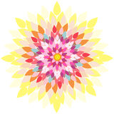 Mandala-fiore Fotografia Stock Libera da Diritti