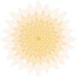Mandala-fiore Immagine Stock