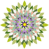 Mandala-fleur Image stock