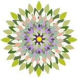 Mandala-flor Imagem de Stock