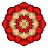 Mandala floral del ramo de la estrella del satén Foto de archivo libre de regalías