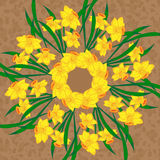 Mandala floral del vector Fotos de archivo libres de regalías
