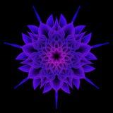 Mandala Flower, geometría sagrada Fotografía de archivo