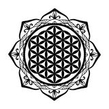 Mandala frame and Flower of Life tattoo or stencil template, Sacred geometry symbol Alchemy, spirituality, religion, philosophy, a Stock Photo