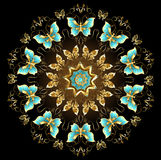 Mandala of golden butterflies Stock Photos