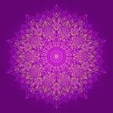 Mandala. Härlig hand-dragen blomma. Royaltyfri Foto