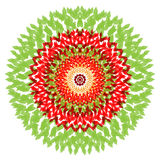 Mandala hermosa del vector Ejemplo lindo con la flor Fotografía de archivo libre de regalías