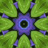 Mandala Kaleidoscopic design Stock Photo