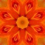 Mandala Kaleidoscopic design Royalty Free Stock Image
