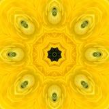 Mandala Kalejdoskopowy projekt Zdjęcia Royalty Free