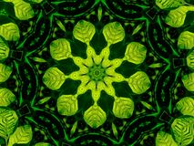 Mandala Leaf Design naturelle intelligente Illustration Libre de Droits