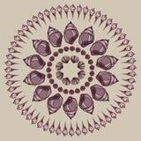 Mandala made of Seashells. Stock Photos