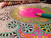 Mandala. Meditation drawing done with color pencils and patience Stock Images