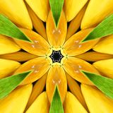 Mandala orange lumineux, kaléidoscope Photographie stock libre de droits