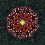 mandala ornamentacyjny Ilustracja Wektor
