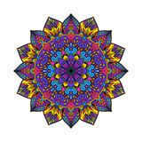 Mandala pattern flower vector. Stock Photography