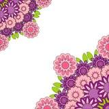 Mandala púrpura rosada abstracta Frontera ornamental floral Imagen de archivo libre de regalías