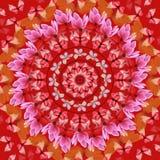 Mandala roja ilustración del vector
