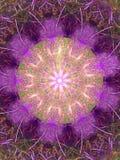 Mandala roxa peludo Fotografia de Stock Royalty Free