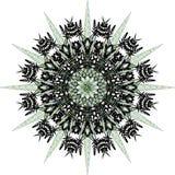 Mandala, Schneeflocke lizenzfreie stockfotos