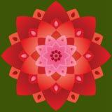 Mandala simple - Lotus Shape Red et couleurs roses Photo libre de droits