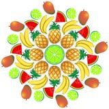 Mandala Summer Fruit and Juice 1 Stock Photography