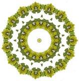Mandala van druiven vector illustratie