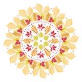 Mandala variopinta con le foglie di autunno su fondo bianco Mazzo di autunno Fotografia Stock