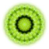Mandala verde 01 da natureza ilustração royalty free