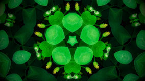 Mandala verde abstrata da flor Fotos de Stock
