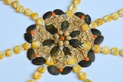 Mandala zboża, adra i ziarna, Bezpłatny pojęcie Kukurudza, koks, ryż, owsy, soczewicy, soje, dyniowy ziarno zdrowa żywność  obrazy stock
