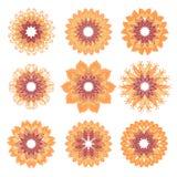 Mandalas coloridas fijadas Vector de la mandala, arte de la mandala, diseño de la mandala, modelo de la mandala, tatuaje de la ma Imágenes de archivo libres de regalías