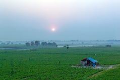 Mandalay Arkivbilder