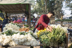 Mandalay Flower Market Royalty Free Stock Images