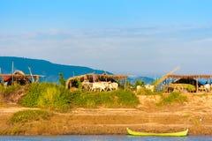 MANDALAY, MYANMAR - 1 DE DICIEMBRE DE 2016: Los campesinos que trabajan en el banco del río Irrawaddy, Birmania Copie el espacio  Imagen de archivo
