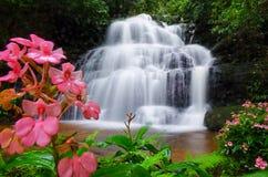 Mandang vattenfall, Thailand, blomma royaltyfri bild