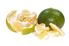 Mandarín verde y amarillo Fotos de archivo