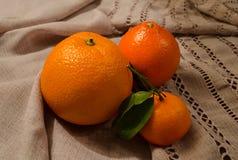 Mandarijn en sinaasappel op natuurlijk canvas Royalty-vrije Stock Fotografie