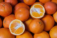 mandarijnen Stock Afbeelding