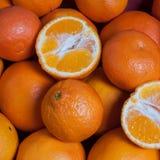 mandarijnen Royalty-vrije Stock Foto