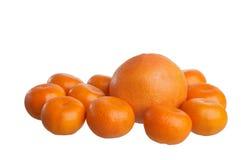 Mandarijnen en grapefruit Royalty-vrije Stock Foto