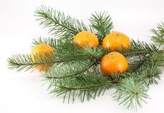 Mandarijnen en Kerstboom Stock Fotografie