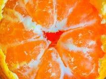 Mandarijnen heldere oranje sneeuw Stock Foto