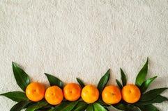 Mandarijnensinaasappelen, mandarins, clementines, citrusvruchten met bladeren, achtergrond, exemplaarruimte stock foto