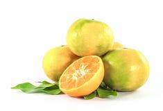 Mandarijnfruit op witte achtergrond Royalty-vrije Stock Afbeelding