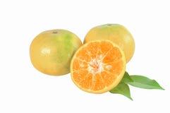 Mandarijnfruit op witte achtergrond Stock Afbeeldingen