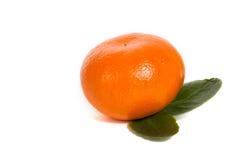 Mandarin. Single mandarin isolated on white background stock image