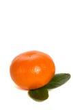 Mandarin. Single mandarin isolated on white background stock photo