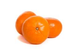 Mandarin. Three mandarins isolated on white background stock image